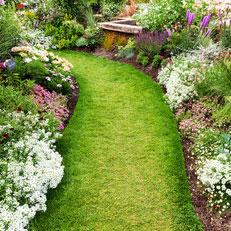 Allée de jardin
